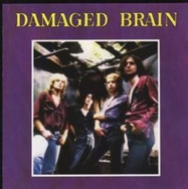 Damaged Brain